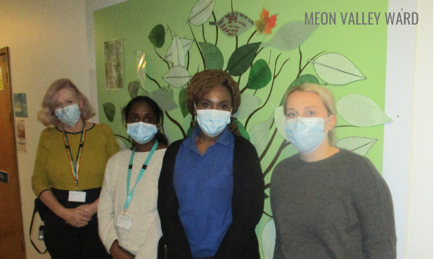 Meon valley nurses .png